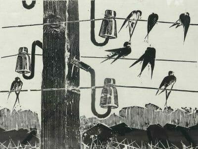 Β.Σταύρου-1973-3