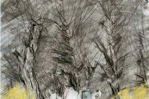 2006-color-pencil-charcoal-35x45